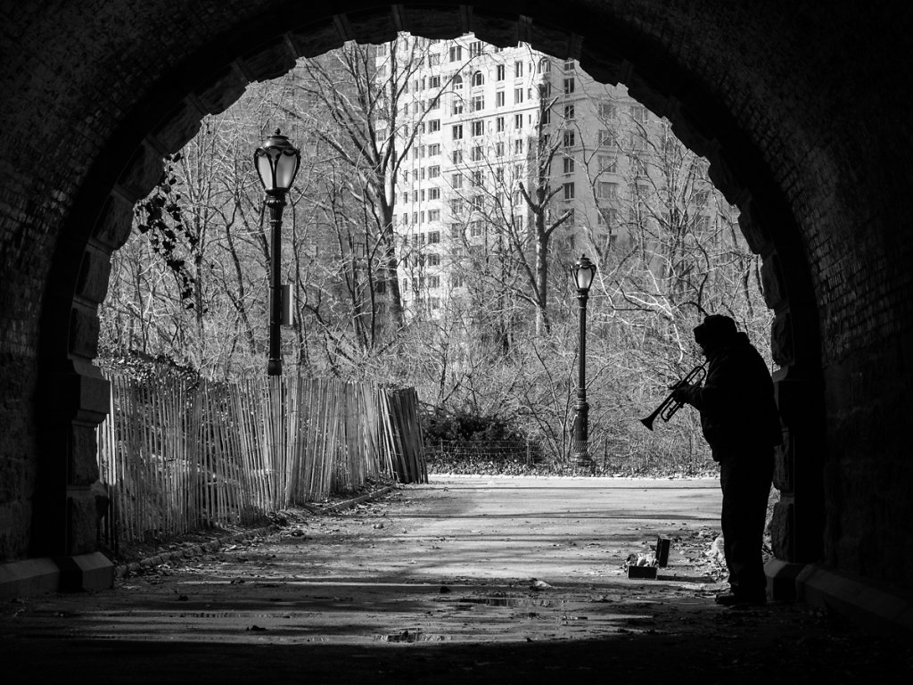 trumpeter // new york