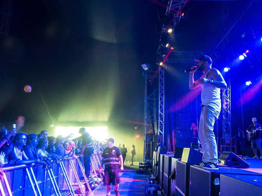 deichbrand festival 2014